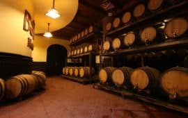 Bar Debay- Wine Cellar
